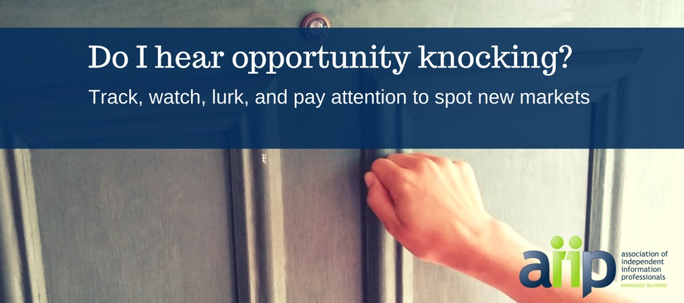 Find-New-Markets-Clients-Solopreneur-InfoPro